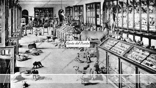 museodeciencias_04_puertosantamaria