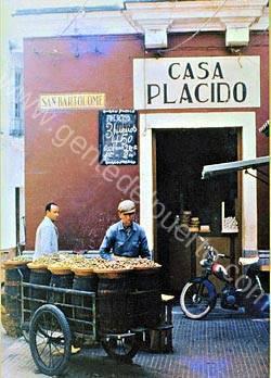aceitunero__puertosantamaria