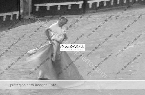 pajarito_plaza_2_puertosantamaria