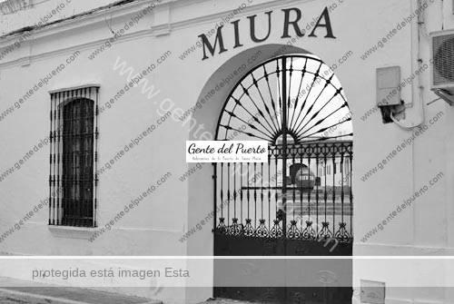 miura_cazalladelasierra
