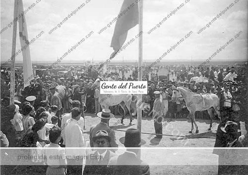 02Feria-de-ganados-(foto-J.-Castroverde)