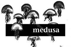 medusa_mfl2_puertosantamaria