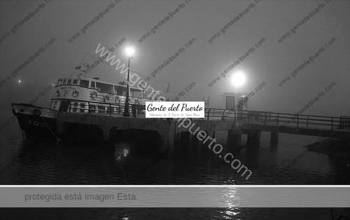 gaviotas4_puertosantamaria