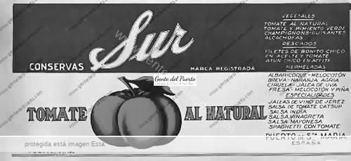 conservas___sur_tomate_puertosantamaria-copia