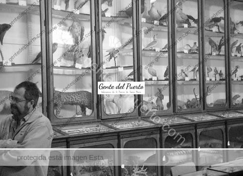museo_safa_2011_puertosantamaria