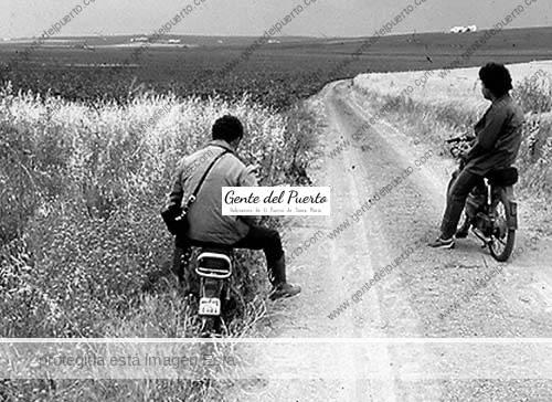 isla_cartare_2_puertosantamaria