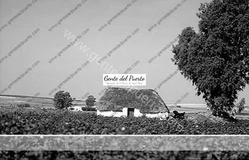 isla_cartare_8_puertosantamaria
