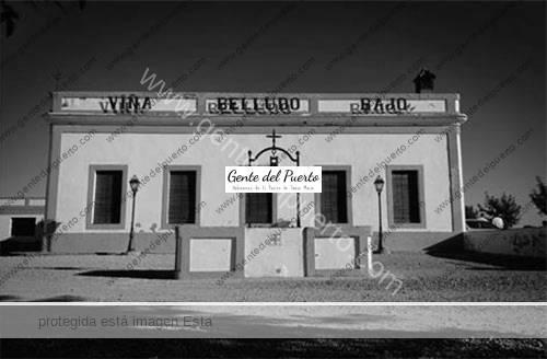 viñas1_amg_puertosantamaria