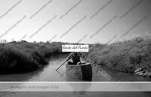 arrollosalado_4_puertosantamaria