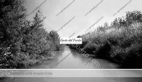 arrollosalado_6_puertosantamaria