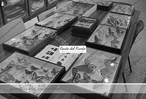museo_safa_febr2011_2_puertosantamaria
