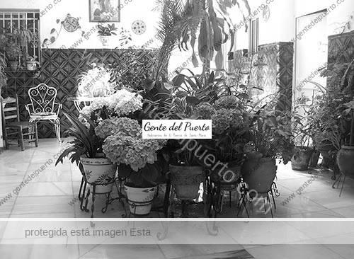 patios5_6_puertosntamaria
