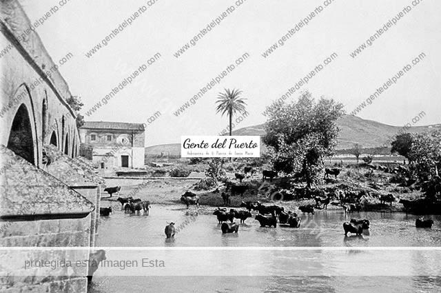 2.981. La 'calle larga' del Guadalete, el río que hoy cumple años