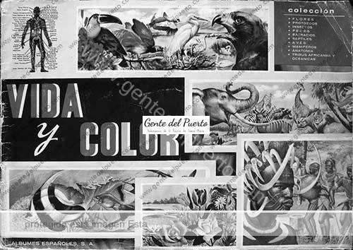 album-vida-y-color-col-puertosantamaria