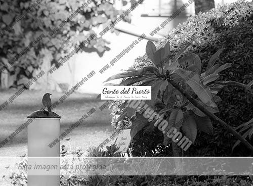 hotel-los-jandalos-jardin-botanico-puertosantamaria