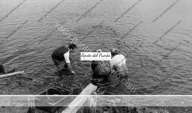 3.445. La pesca de arrastre en el río Guadalete