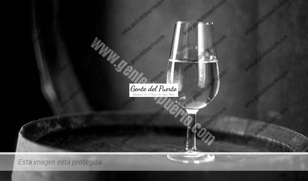 3.673. Juan Jiménez Martínez. Catedrático de Genética, defensor del Vino Fino