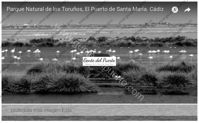 3.713. El parque natural de Los Toruños y la playa de Levante