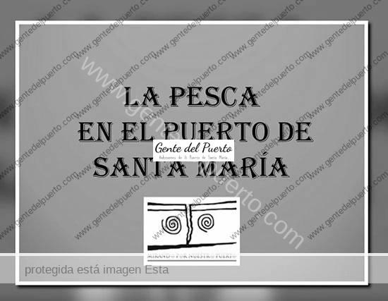 3.816. La Pesca en El Puerto de Santa María