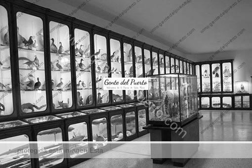 4.759. El Museo de Ciencias de San Luis Gonzaga. Un tributo a la naturaleza, desconocido (I)